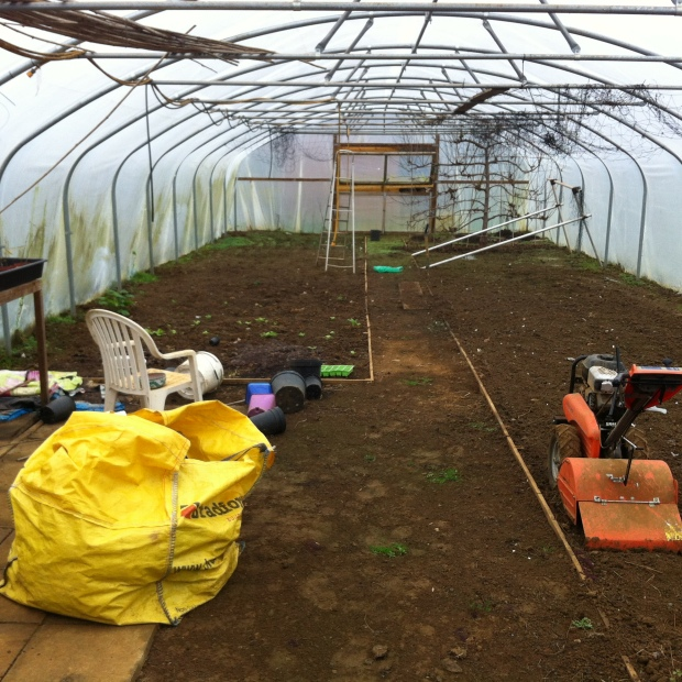 The Polytunnel in 'resting' mode
