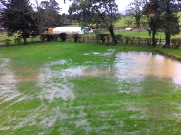 Front Lawn under water